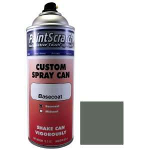 Touch Up Paint for 2011 Ford Police Car (color code YG) and Clearcoat