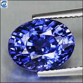64cts  Kashmir Blue Sapphire  Full Fire  Natural  Oval  Srilanka