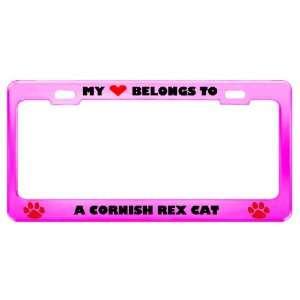 Cornish Rex Cat Pet Pink Metal License Plate Frame Tag Holder