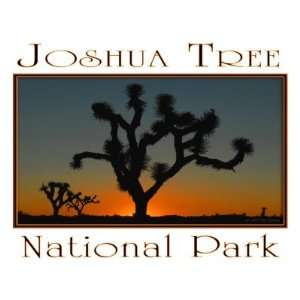 Joshua Tree 2 National Park Fridge Magnet