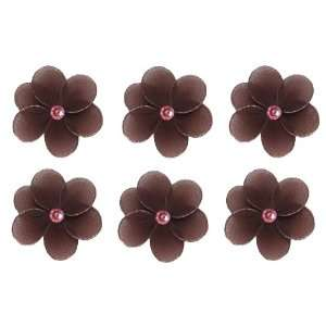 Brown Pink Mini (X Small) Daisy Flower Daisies Flowers 6pc set