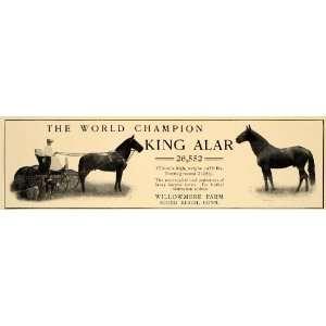 1906 Ad Cheval World Champion Horse Willowmere Farm Sound