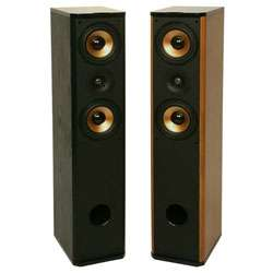 Premier PA 6F Floor Standing Speakers (Set of 2)