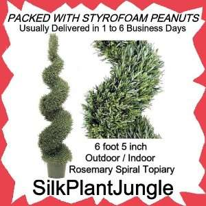 6 Rosemary Spiral Topiary Tree TP406: Home & Kitchen