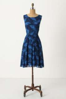 Anthropologie   best dress in awhile