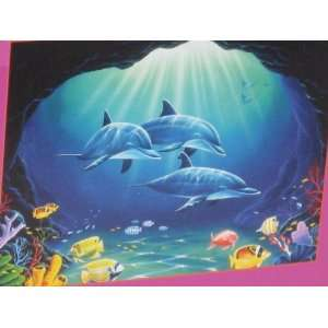 Seaside Cave Explorers 550 Piece Jigsaw Puzzle Toys