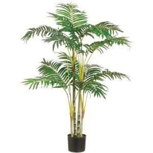 Areca Palm Tree X14 in Plastic Pot Green (Pack of 2):