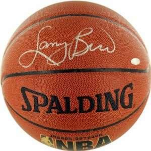 com Steiner Boston Celtics Larry Bird Autographed Basketball Sports