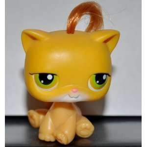 Kitten Shorthair #78 (Cat, Sitting, Real Hair, Yellow, Green Eyes