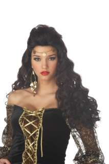 Madame Destiny Halloween Costume Wig   Black