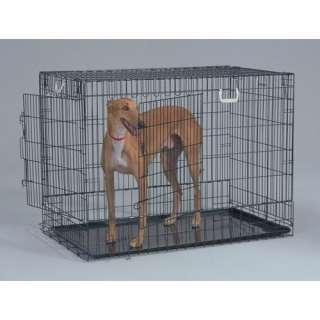 General Cage Two Door Black Wire Dog Crate Dogs