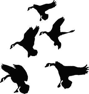 Ducks In Flight Waterfowl Hunting Decals Pro Grade Vinyl Easy To Apply